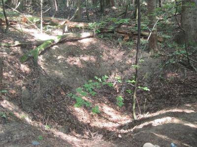 На Прикарпатті на приватній ділянці знайшли криївку УПА