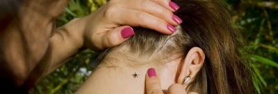 «Кусає непомітно, але небезпечно»: чернівецькі епідеміологи розповіли, як самостійно видалити кліща з тіла
