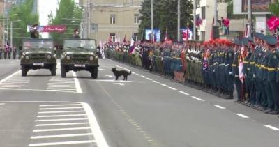 Терорист віддав честь собаці: у мережі висміяли донецький «парад»
