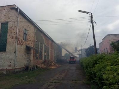 На Буковині рятувальники ліквідували масштабну пожежу на покрівлі пилорами