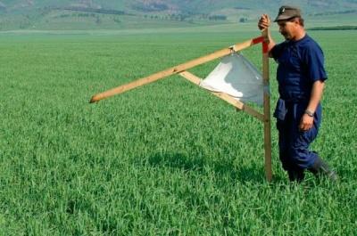 ЄСПЛ: Мораторій на продаж землі в Україні порушує Європейську конвенцію з прав людини