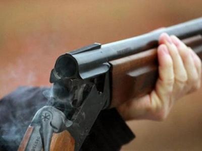 На Львівщині брат з гвинтівки підстрелив молодшу сестру