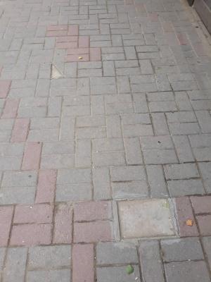 У Чернівцях вкрали половину туристичних «їжачків» - фото