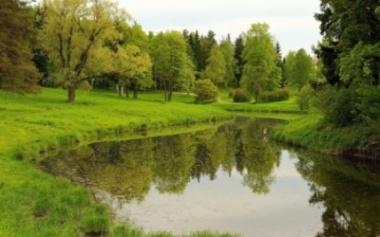 На Буковині невідомі незаконно використовують землі водного фонду
