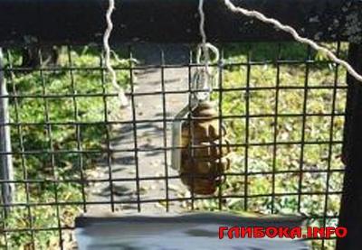 На Буковині підприємець знайшов гранату на паркані