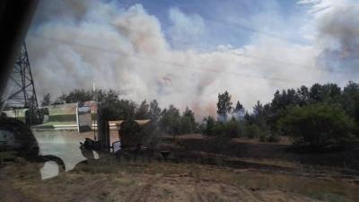 У Чорнобильській зоні спалахнула пожежа