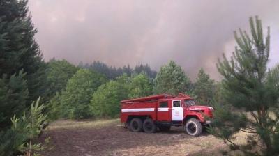 ДСНС: На місці пожежі у Чорнобильській зоні знайшли смолоскипи