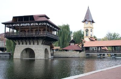 Стала відома причина загибелі риби в озері у Чернівцях