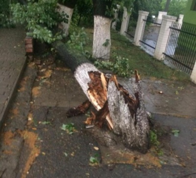 Негода на Буковині: без електрики залишаються 48 населених пунктів