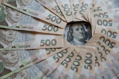 2,5 метра грошей: скільки отримали зарплати голови РДА Буковини