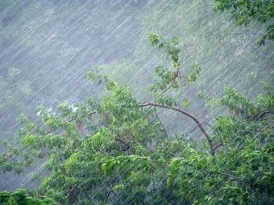 Штормове попередження: на Буковині сьогодні очікуються сильні дощі з градом