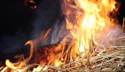 На Буковині в пожежі згоріла тонна сіна