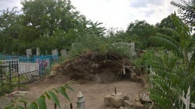 У Миколаєві під час прибирання звалища на кладовищі виявили людські рештки - фото