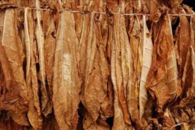 У Чернівцях затримали «бізнесмена», який продав на базарі два мішки тютюну