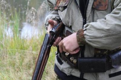 На Буковині оштрафували браконьєра, який вбив однорічного оленя