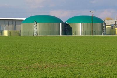 Тепло з соломи і відходів кукурудзи: на Хмельниччині відкрили незвичну теплоелектростанцію