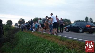 У Румунії туристичний автобус із дітьми перекинувся на автотрасі - фото