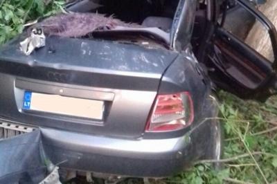 На Буковині легковик злетів з траси і врізався в дерево: загинула юна пасажирка, 4 осіб травмовані