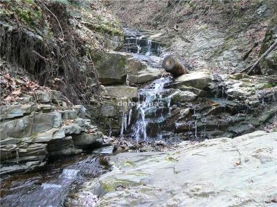 Невідома Буковина: урочище з водоспадами і «залізною» водою