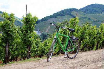 Круті віражі на гравійній дорозі: на Буковині відбулись екстремальні велогонки