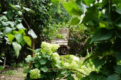 Казковий дворик – зі сміття: сусіди самотужки облаштували подвір'я і під'їзд у Чернівцях - фото