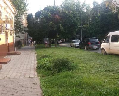 Хотіли зробити парковку: у Чернівцях покарають осіб, які знищили зелену зону