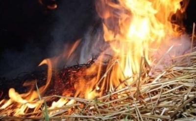 У Чернівецькій області у пожежі згоріли 10 тонн сіна