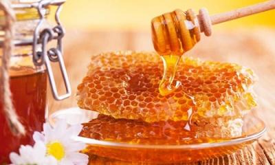 Від кашлю, укусів комарів і похмілля. 7 корисних властивостей меду
