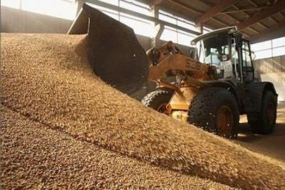 В Україні відбувся перший аукціон малої приватизації: продали зернотік на Буковині