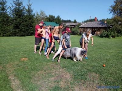 У таборі на Буковині собаки-терапевти лікують дітей