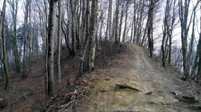 Невідома Буковина: найвища гора Чернівців зі зруйнованою фортецею