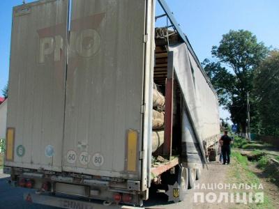 На Буковині поліція затримала вантажівку з деревиною без документів - фото
