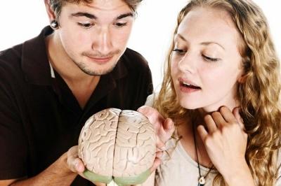 Чоловічий і жіночий мозок: науковці назвали головні відмінності