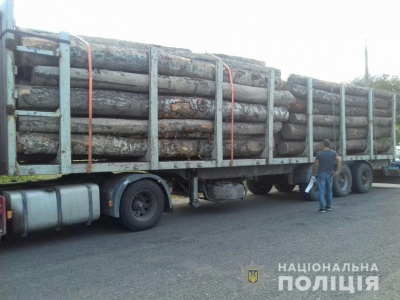 На Буковині поліція викрила двох перевізників лісодеревини без документів
