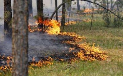 Рятувальники оголосили найвищий рівень пожежної небезпеки у більшості областей України
