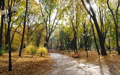 Метеозалежним варто поберегтися: синоптик попередила про температурні «гойдалки» у вересні