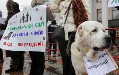 У Чернівцях проведуть марш за права тварин