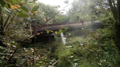 У Чернівцях на водогоні чергова аварія: з труби струменем витікає вода