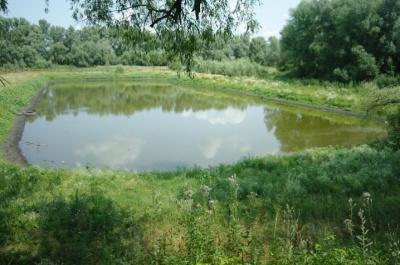Викопав озеро і посадив сад: чернівчанина судитимуть за самовільне захоплення земельної ділянки