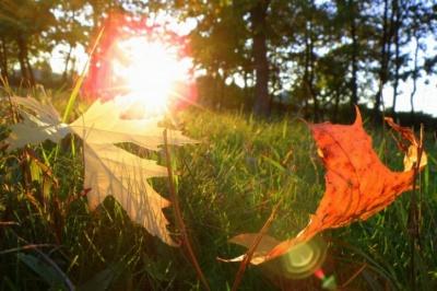 Літо закінчилось: завтра - День осіннього рівнодення