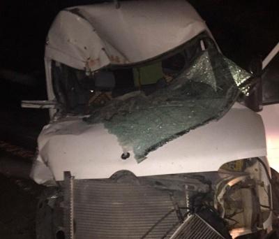 На Буковині п'яний водій мікроавтобуса врізався у вантажівку: загинула дитина