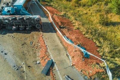 У Київській області молоковоз протаранив фуру з яблуками - фото