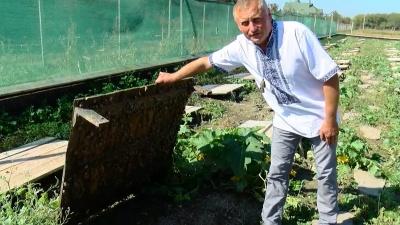 Делікатес для ЄС: подружжя буковинців відкрило першу равликову ферму