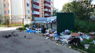 Чернівецька міськрада не хоче відмовлятись від фірми-управителя, близької до Михайлішина