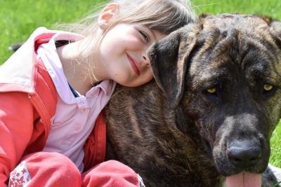 Уляна Супрун розвінчала популярний міф про собак і котів