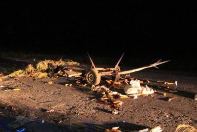 На Буковині зіткнулися «євробляха» і підвода: загинув кінь - фото