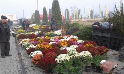 У Реваківцях стартував агропромисловий ярмарок «Буковинська осінь»