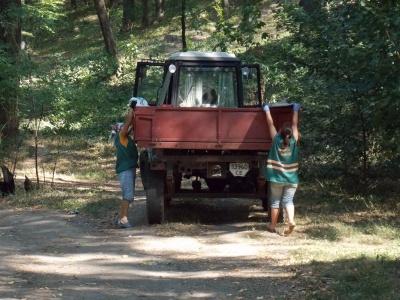 Парк у центрі Чернівців залишився без догляду і власника: у мерії пояснили, чому