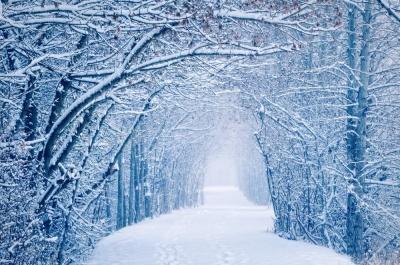 Синоптики розповіли, яка зима чекає на Україну
