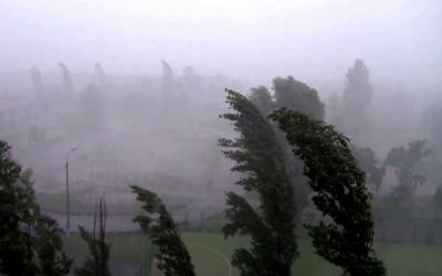 Штормове попередження. Синоптики прогнозують сильні пориви вітру на Буковині